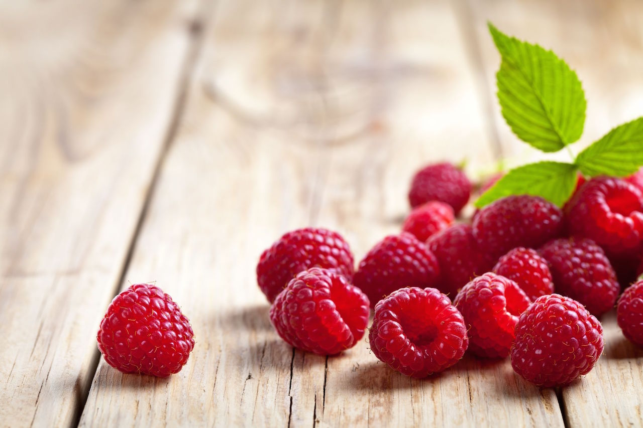 Proposal for sell of organic fresh and frozen berries for 2018-2019